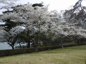 Nankokouen05