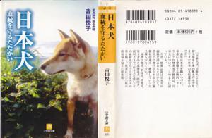 Akitainu03